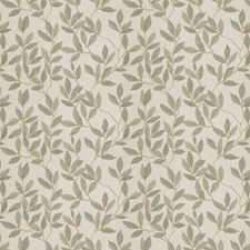 Warm Grey Embroidery Drapery and Upholstery Fabric by Fabricut