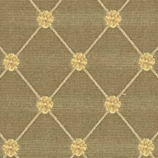 Cypress Drapery and Upholstery Fabric by Robert Allen