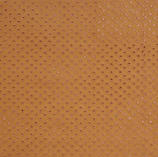 Caramel Embroidery Drapery and Upholstery Fabric by Vervain