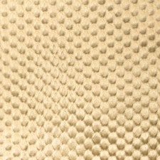 Vermouth Solid Drapery and Upholstery Fabric by Vervain