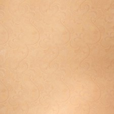 Cashew Paisley Drapery and Upholstery Fabric by Stroheim