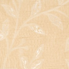 Cashew Leaves Drapery and Upholstery Fabric by Trend
