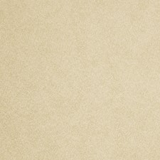 Cedar Solid Drapery and Upholstery Fabric by Trend