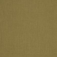 Forest Solid Drapery and Upholstery Fabric by Trend