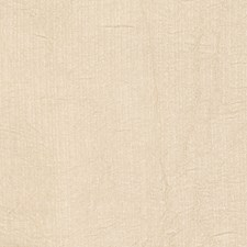 Oyster Small Scale Woven Drapery and Upholstery Fabric by Trend