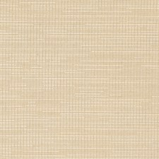 Tussah Texture Plain Drapery and Upholstery Fabric by Trend