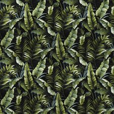 Absynth Onyx Floral Drapery and Upholstery Fabric by S. Harris