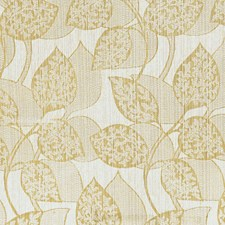Anise Drapery and Upholstery Fabric by RM Coco