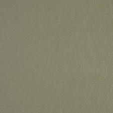 Fir Drapery and Upholstery Fabric by Robert Allen