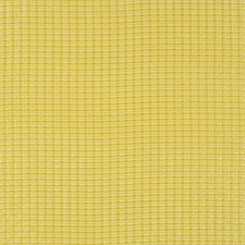 Beeswax Drapery and Upholstery Fabric by Robert Allen
