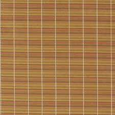 Indian Summer Drapery and Upholstery Fabric by Robert Allen /Duralee