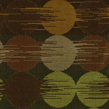 Cajun Drapery and Upholstery Fabric by Robert Allen