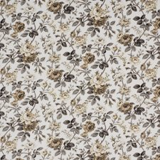 Mica Drapery and Upholstery Fabric by Robert Allen /Duralee