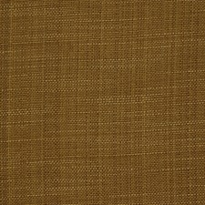 Desert Beige Drapery and Upholstery Fabric by Robert Allen