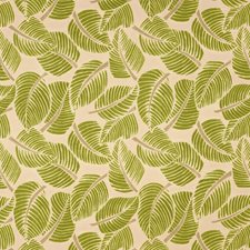 Leaf Drapery and Upholstery Fabric by Schumacher
