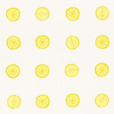 Lemon Drapery and Upholstery Fabric by Schumacher