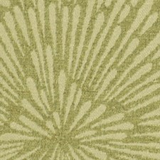 Tarragon Drapery and Upholstery Fabric by Robert Allen/Duralee
