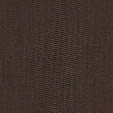 Brown Drapery and Upholstery Fabric by Robert Allen