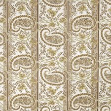 Kiwi Paisley Drapery and Upholstery Fabric by Fabricut