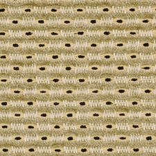 Domino Drapery and Upholstery Fabric by Robert Allen/Duralee