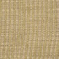 Seagrass Drapery and Upholstery Fabric by RM Coco