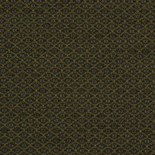 Tarragon Drapery and Upholstery Fabric by Robert Allen