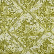 Sprout Drapery and Upholstery Fabric by Robert Allen