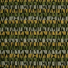 Peridot Drapery and Upholstery Fabric by Robert Allen
