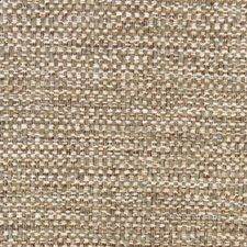 Shale Drapery and Upholstery Fabric by Robert Allen /Duralee