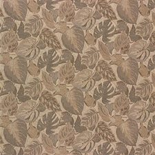 Beige Tropical Drapery and Upholstery Fabric by Kravet