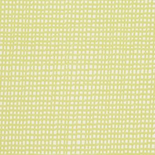 Lime Drapery and Upholstery Fabric by Robert Allen /Duralee