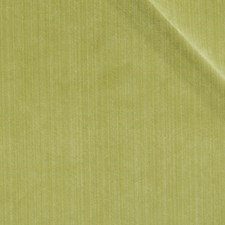 Lemongrass Drapery and Upholstery Fabric by Robert Allen