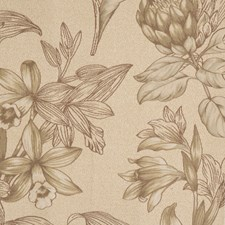 Parchment Toile Drapery and Upholstery Fabric by Fabricut