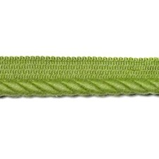 265717 7302 554 Kiwi by Robert Allen
