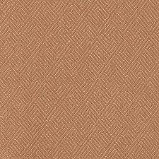 267933 DW16165 34 Pumpkin by Robert Allen