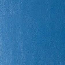 268609 DF16135 54 Sapphire by Robert Allen