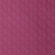 270029 SU15878 299 Fuchsia by Robert Allen