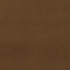 285387 DV15916 587 Latte by Robert Allen
