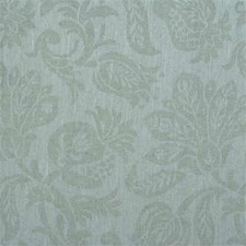 Mist Botanical Drapery and Upholstery Fabric by Kravet
