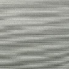 286855 36161 248 Silver by Robert Allen