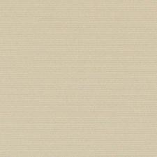 289775 32810 281 Sand by Robert Allen