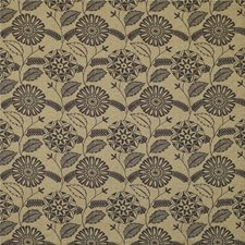 Straw Botanical Drapery and Upholstery Fabric by Kravet