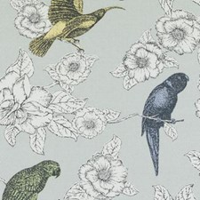 294463 DE42609 159 Dove by Robert Allen