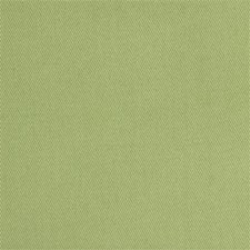 Celery Drapery and Upholstery Fabric by Kravet