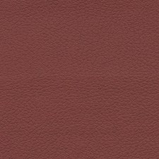 Raisin Drapery and Upholstery Fabric by Schumacher