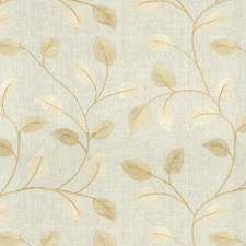 Palomino Botanical Drapery and Upholstery Fabric by Kravet