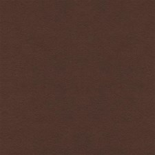 Brandy Solids Drapery and Upholstery Fabric by Kravet
