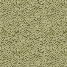 Gingko Velvet Drapery and Upholstery Fabric by Kravet