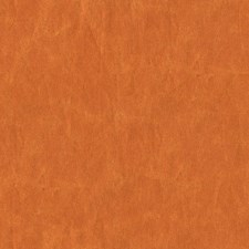 Pumpkin Solid W Drapery and Upholstery Fabric by Kravet