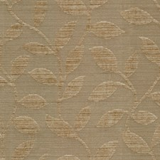 Cafe Latte Botanical Drapery and Upholstery Fabric by Kravet